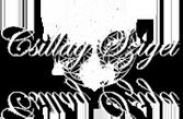 csillagforras.hu Logo