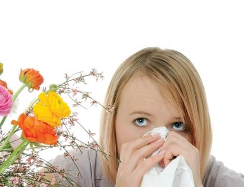 Allergia ~ Az Immunrendszer téves riasztása