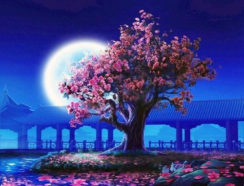 Növekvő Hold hatása az életünkben